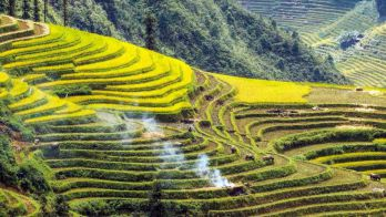 NORTH VIETNAM HOMESTAY TRIP – 05 DAYS / 04 NIGHTS (VI-HO12)