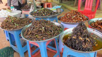 DAY 4 : PHNOM PENH / KAMPONG THOM / SIEM REAP